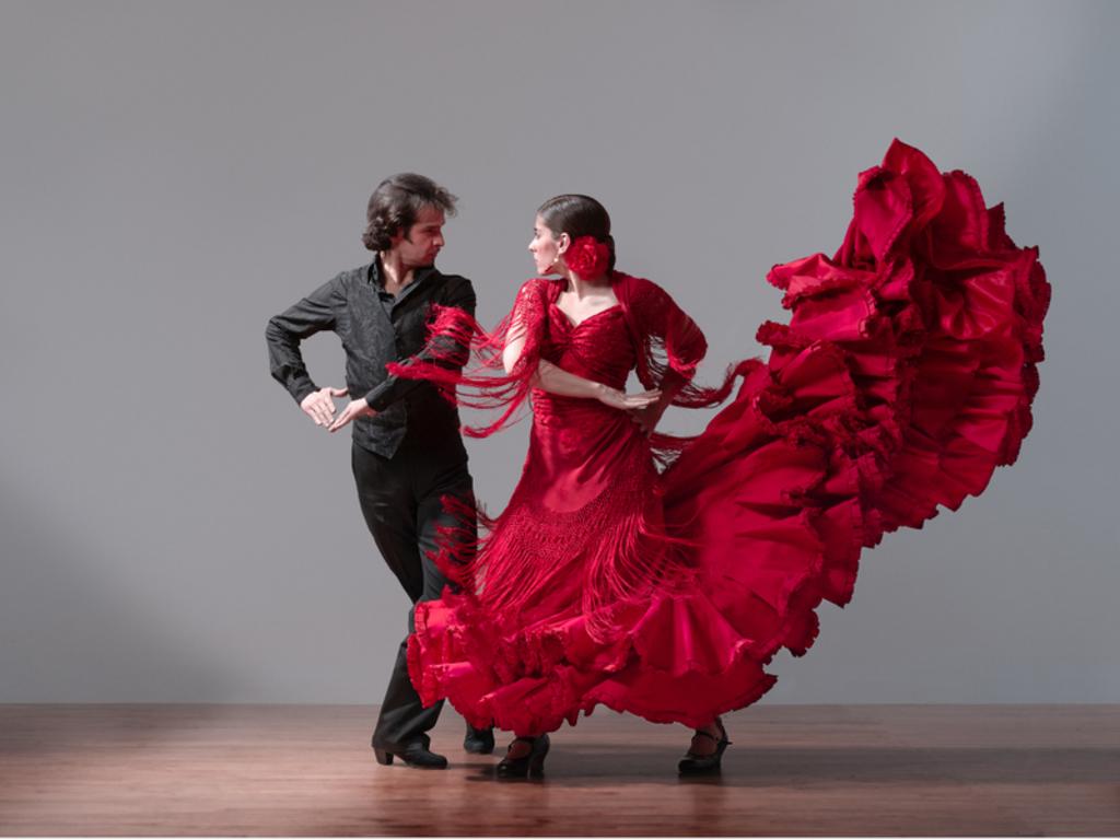 Che lingua parla il Flamenco?