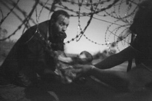 World Press Photo 2016 al Museo di Roma in Trastevere